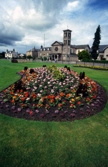 forres in bloom picture photograph